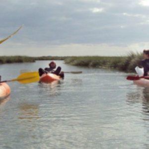 kayak por las marismas del Río Guadiana, Huelva