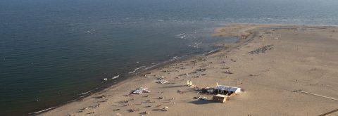 Playa de Isla canela zona Alcaudón